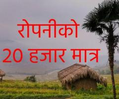 Land sale in Pyuthan
